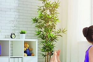 Топ-4: простые упражнения на все группы мышц