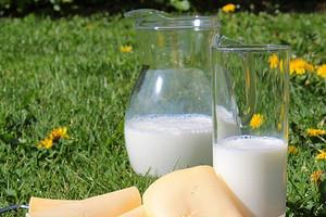 Тестируем сыр «Российский»: какой самый качественный?