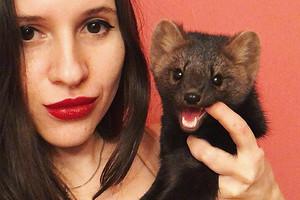 Москвичка забрала соболя со зверофермы, и он стал Instagram-звездой (мимими дня, видео)