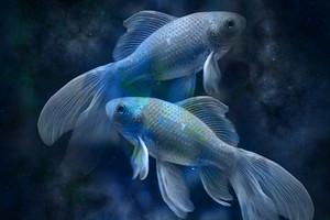 10 самых счастливых имен, которые принесут удачу Рыбам