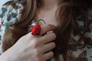 Приснились розы: что значат цветы во сне