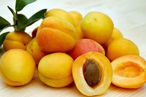 Не выбрасывай: польза и вред косточек абрикоса