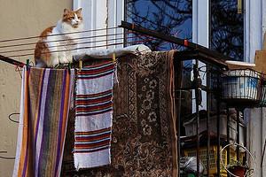 7 лайфхаков по домоводству из СССР, которые уже не работают