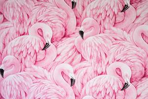 Маникюр с фламинго: какой дизайн выбрать, чем делать, как продлить стойкость