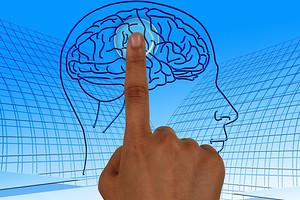12 самых полезных продуктов для мозга