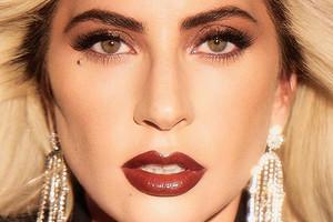 Леди Гага официально подтвердила свои отношения с миллиардером Майклом Полански