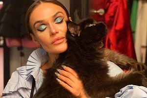«Хаотичные царапины вразные стороны»: Алена Водонаева пожаловалась насвоего кота породы мейкун (видео)