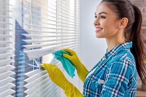 Как быстро помыть жалюзи, не снимая их с окна: подробная инструкция для каждого вида