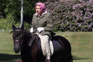 На горном пони и в розовом платке: 94-летняя королева Елизавета II прервала дворцовую самоизоляцию