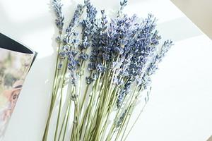 Аромат чистоты: 7 запахов, которые наполнят дом ощущением свежести