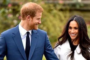 «Прорезали дыры в заборе»: Меган Маркл и принц Гарри судятся из-за беспилотников папарацци