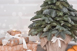Как избавиться от новогоднего декора и не навредить экологии: 5 способов