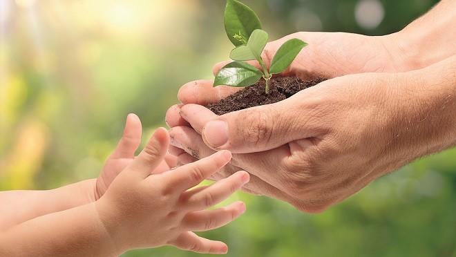 Экология влияет на умственное развитие детей