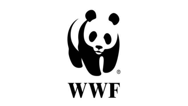 12 июля, в честь 20-летия WWF в России, состоится «Бал на траве»