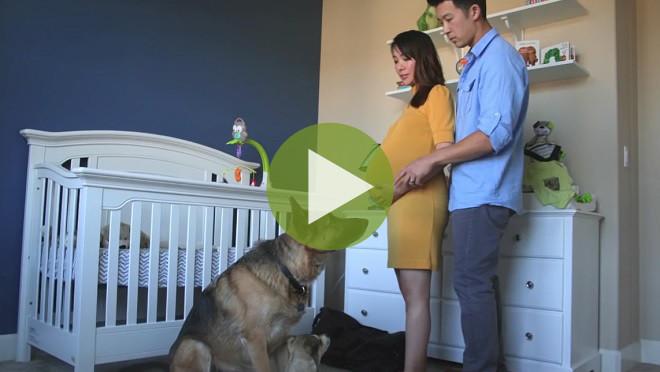 Трогательное видео: Вся беременность за 90 секунд