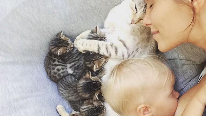 Дети и котята — самые трогательные мгновения (фото)