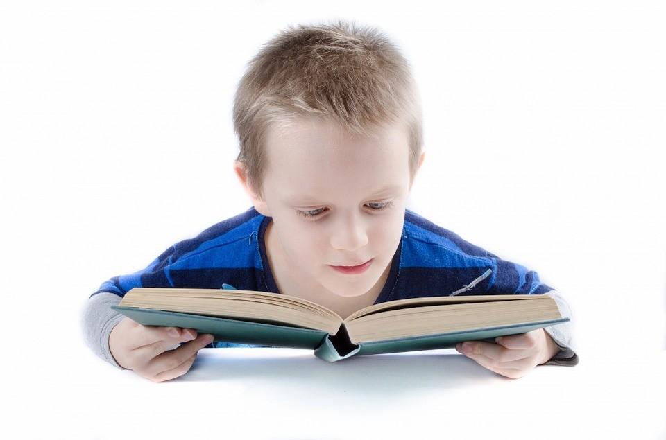 Интеллект дошкольника: как проверить уровень знаний