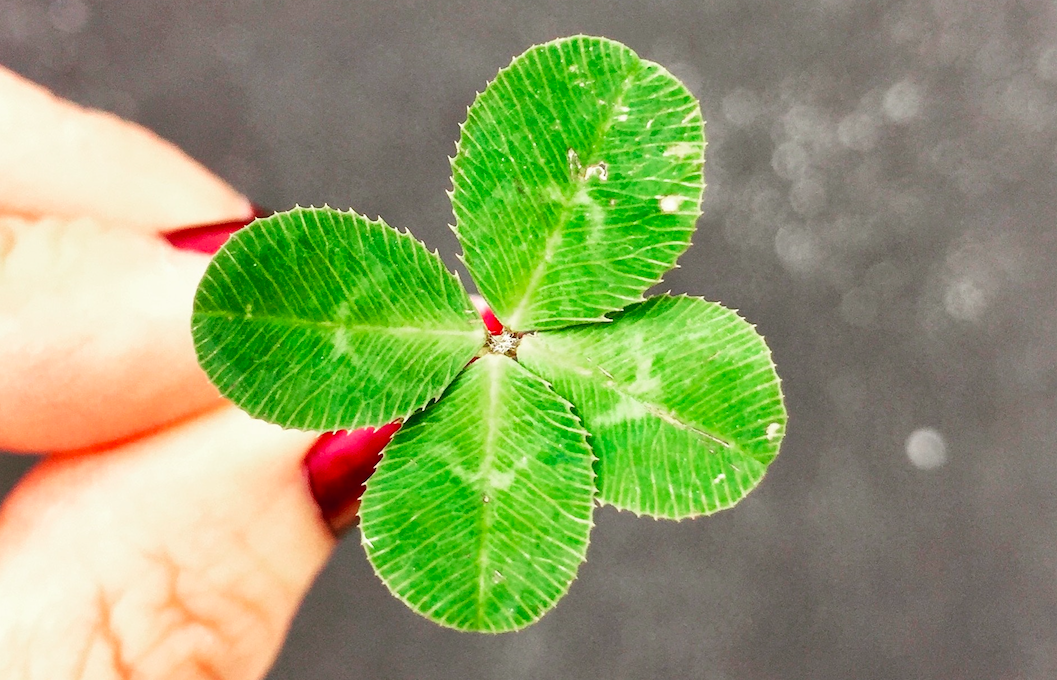 5 правил, как стать удачливее