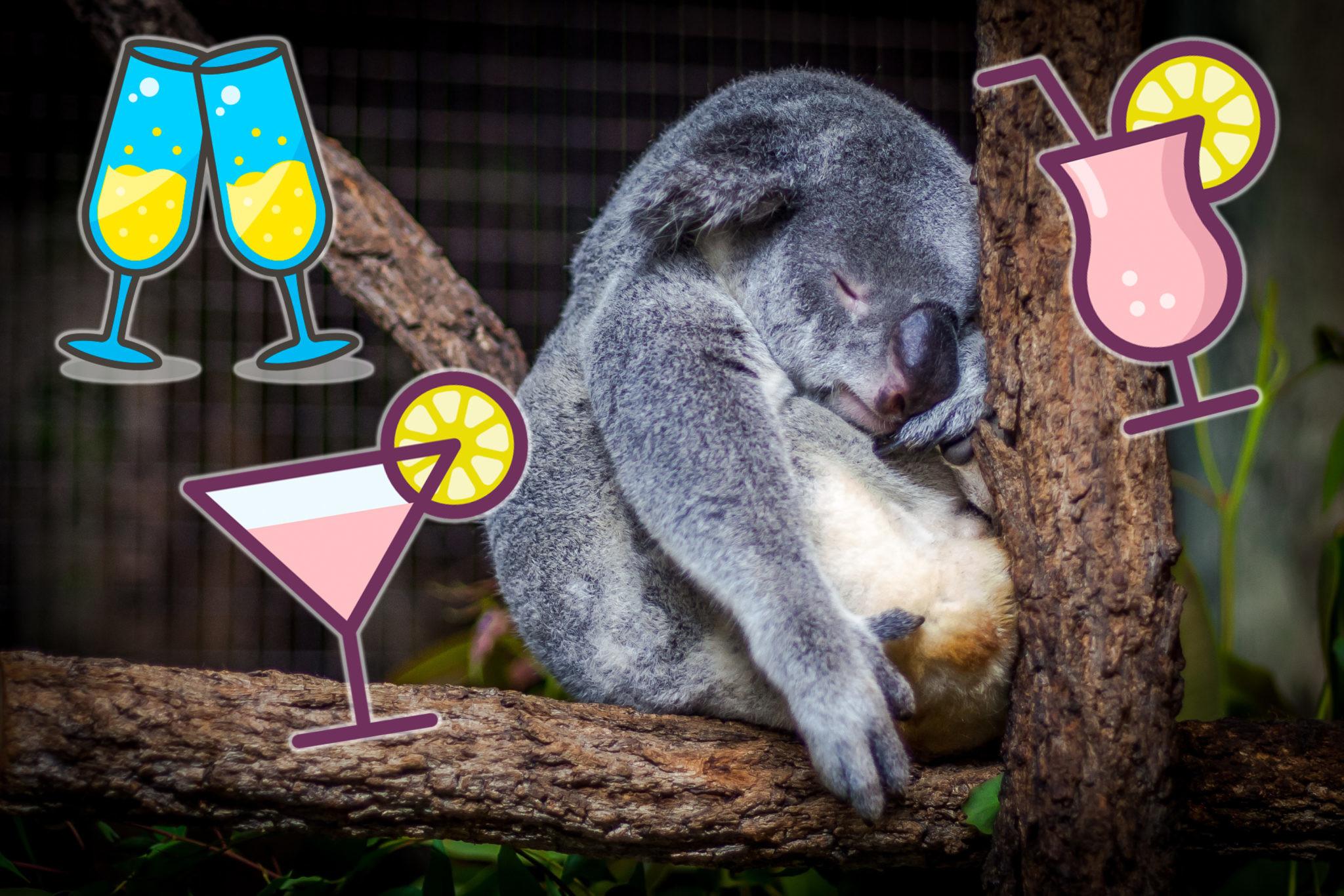 Много пить и не пьянеть: полезные хитрости