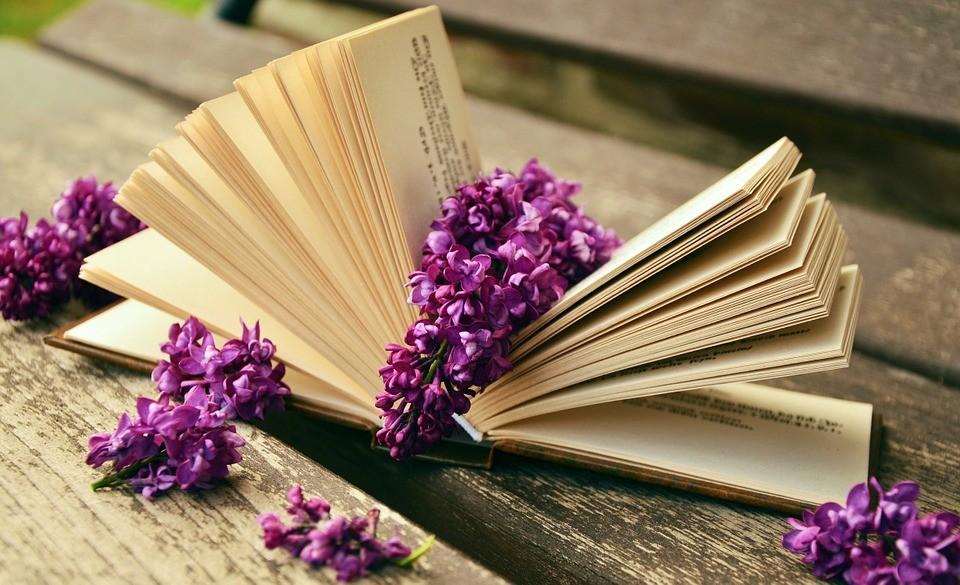 Книги как развитие или пережитки прошлого