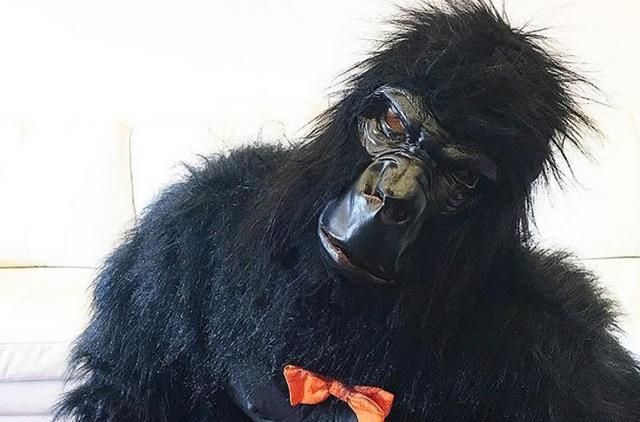 Букмекеры прогнозируют победу на «Евровидении-2017» обезьяне