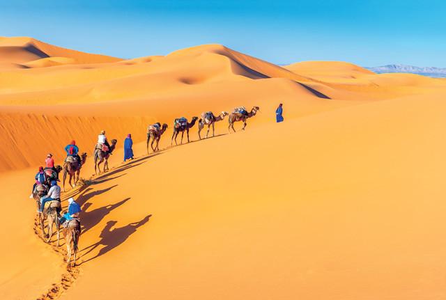 Отдых в Марокко: от солнечных пляжей до благоухающих садов