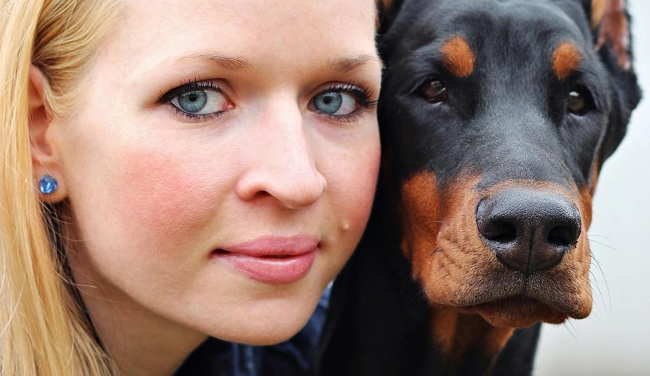 Права и обязанности владельцев собак: за что придется платить штраф