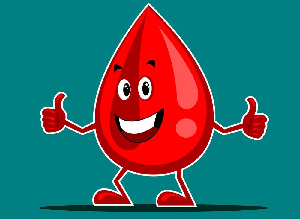 Как поднять гемоглобин: продукты, народные средства и лекарства