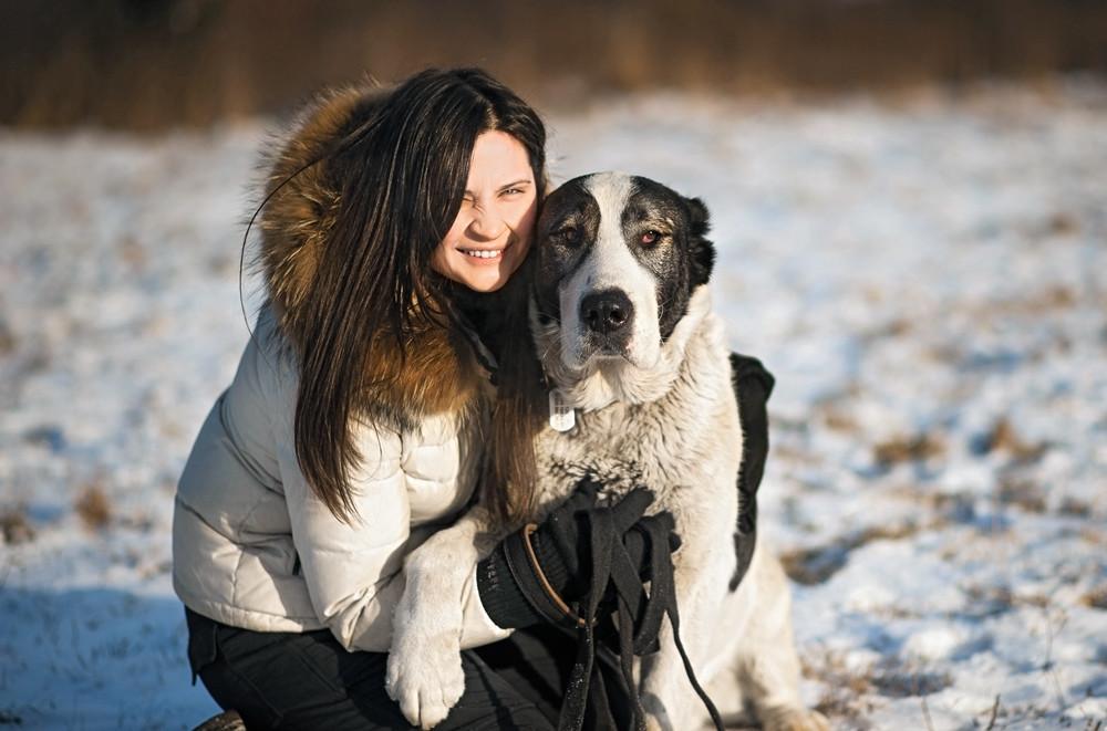 Как я стала волонтером для собак. Личный опыт