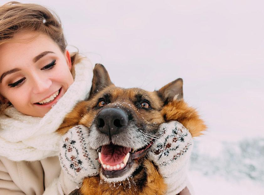 Как помочь домашним животным зимой? Отвечаем на вопросы