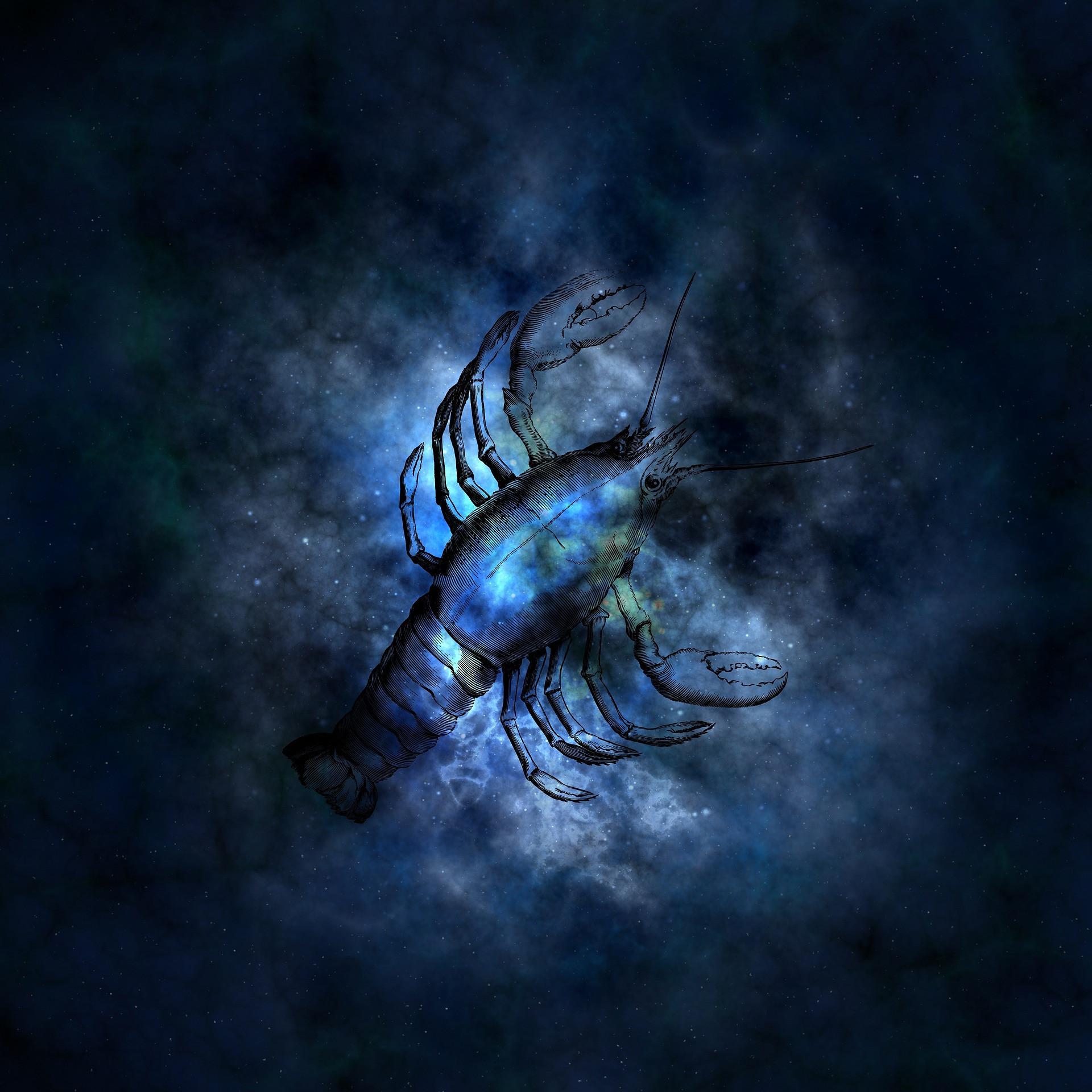 Скорпион: совместимость в любви и браке с каждым из знаков Зодиака