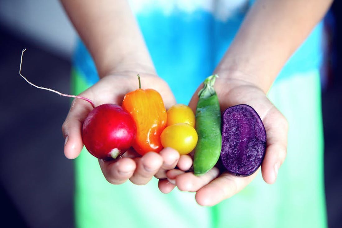 Понятие растяжимое: что такое «нормальная порция» овощей, орехов или сухофруктов?