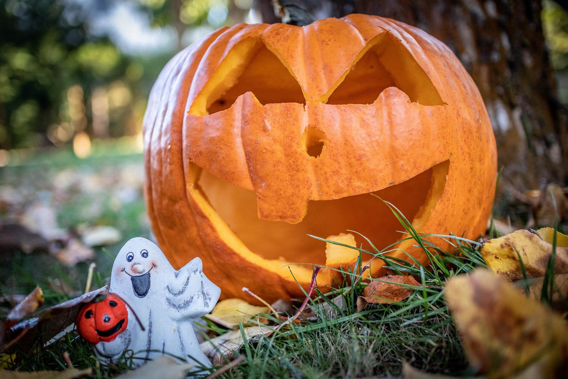 Страшно вкусно: 5 блюд с тыквой, которые можно приготовить на Хэллоуин