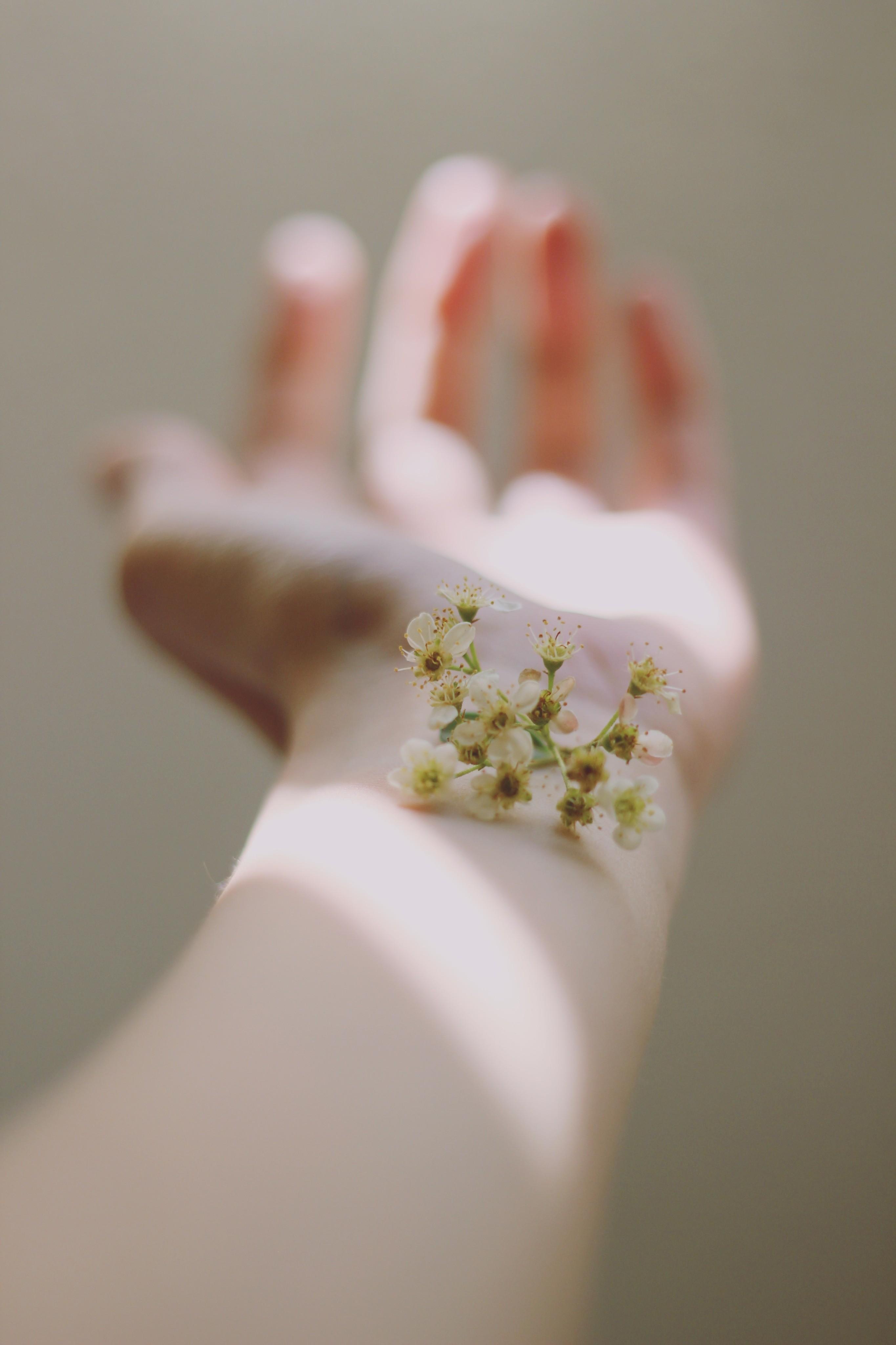 8 натуральных способов одолеть экзему и атопический дерматит