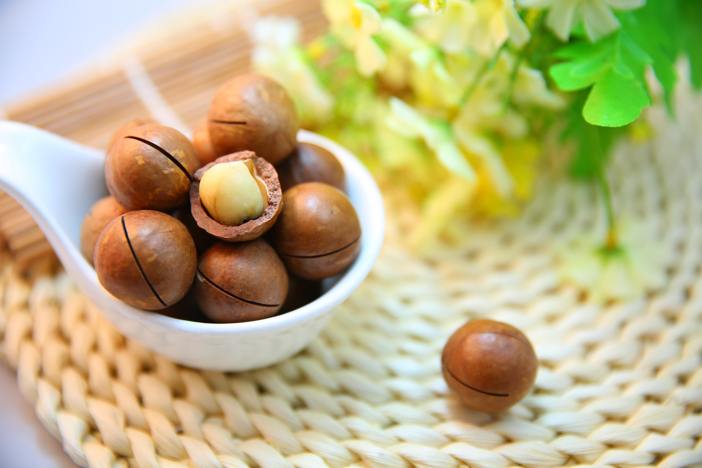 Орех макадамия: польза и вред для организма