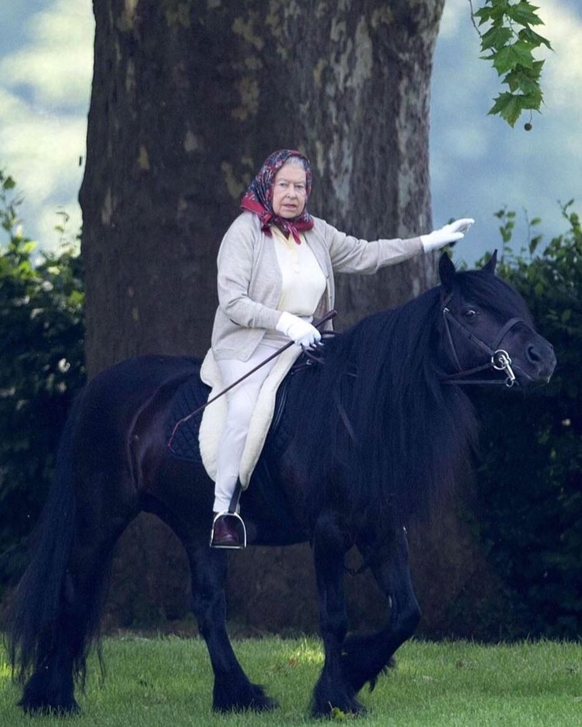 Вместо защитного шлема королева надевает свою знаменитую косынку (чтобы неиспортить прическу!), облачается втемное пальто иотправляется напрогулку верхом поБольшому Виндзорскому парк...