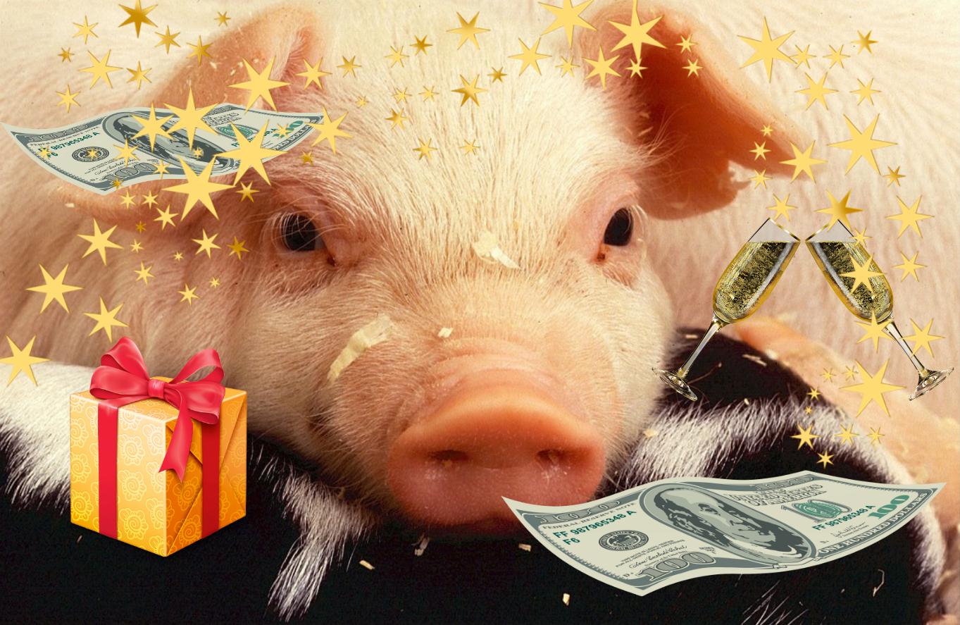 Новогодние приметы: как угодить символу наступающего 2019 года?