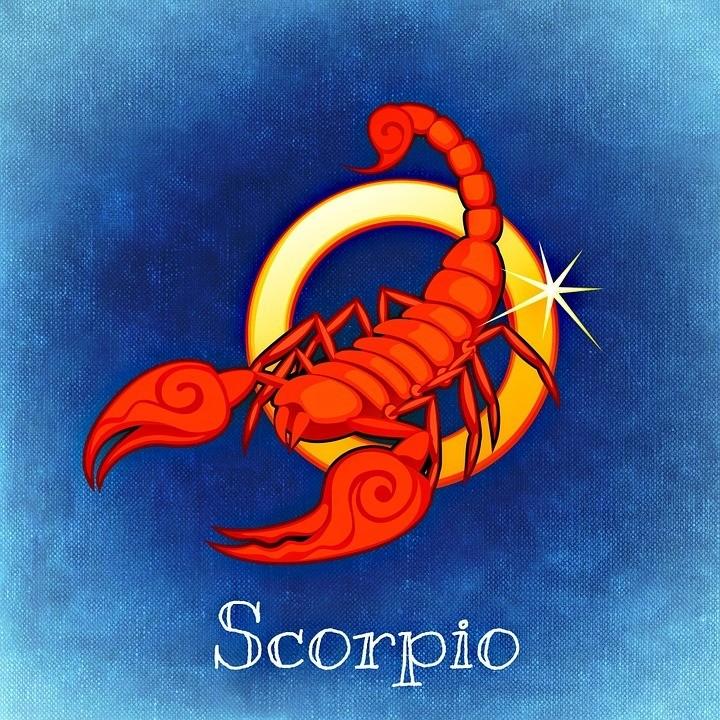 Скорпион – отличается независимостью ициничностью взглядов. Они рассудительны, но вто же время их поступки очень тяжело предугадать окружающим.