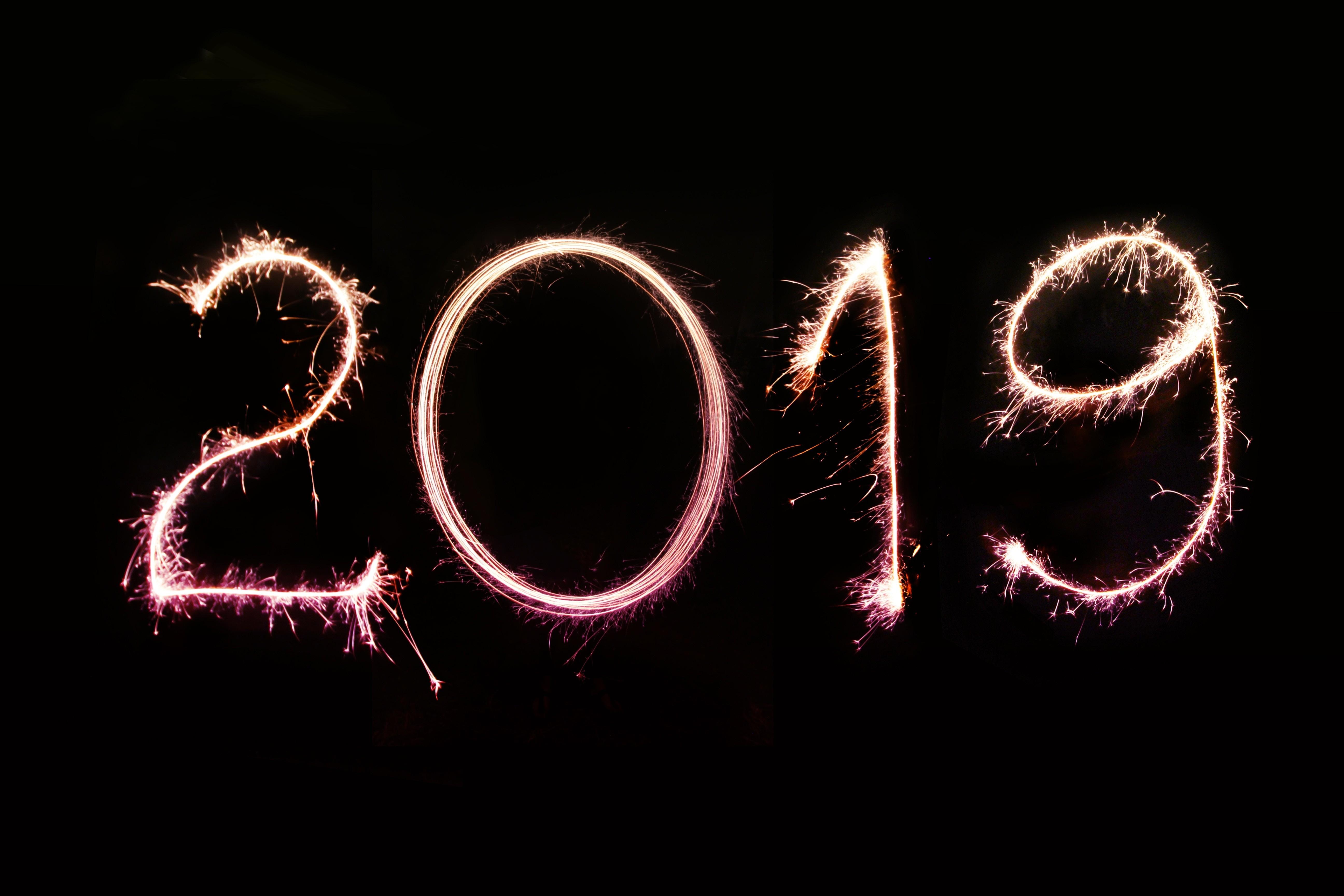 Каким будет год Свиньи для тебя?