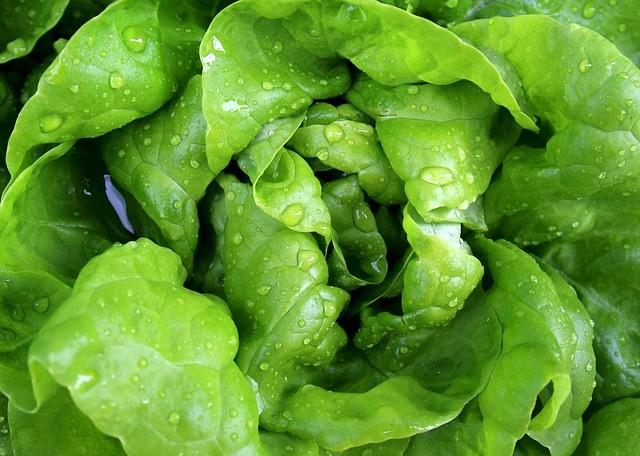 Какие продукты помогут избавиться от запаха чеснока? Советы экспертов