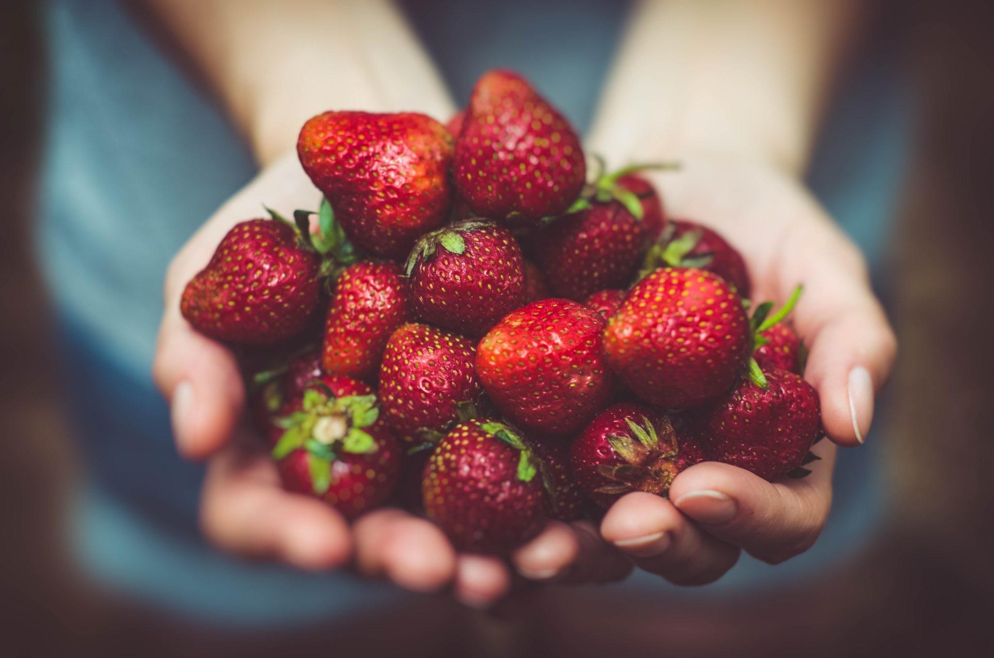 Живая еда: как она влияет на наш организм?