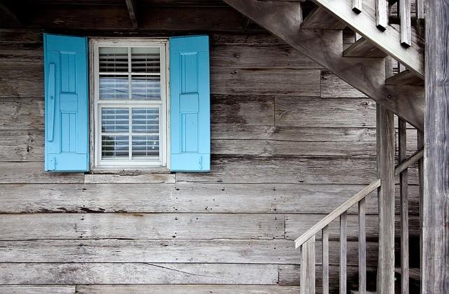 Как избавиться от насекомых в доме летом?