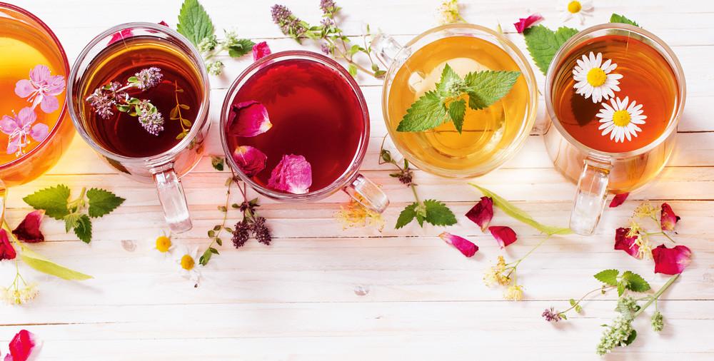 Травы для чая: 10 растений с целебным эффектом
