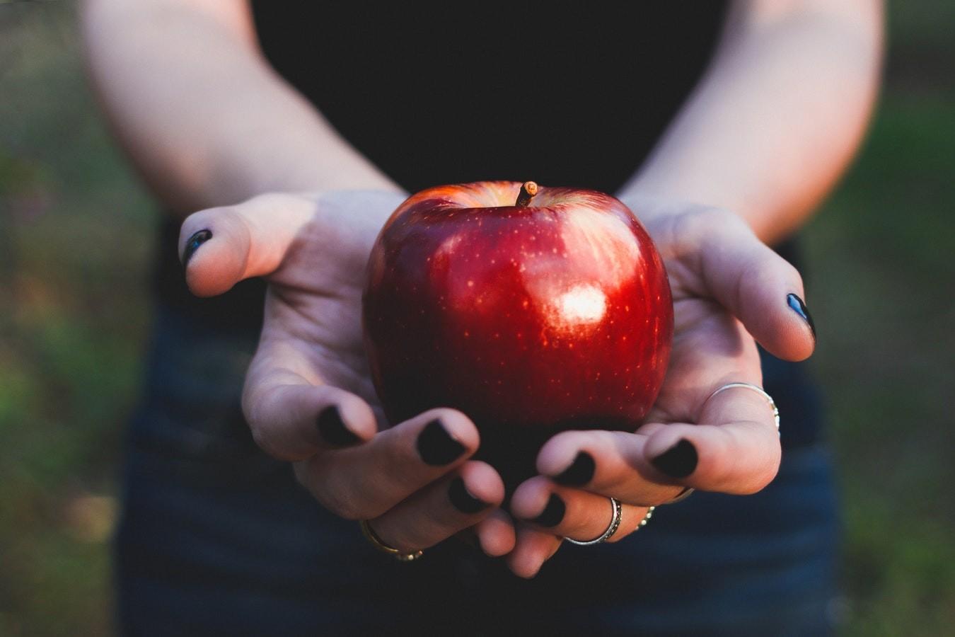 Какие яблоки лучше? Полный обзор сезонного фрукта