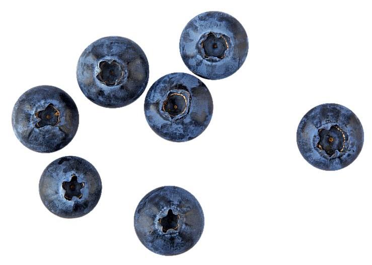 Ты нечего не потеряешь, если вместо сушеных ягод годжи или асаи съешь чашку свежих местных ягод. По содержанию витаминов они ничем не уступают! Как бонус – голубика, черника или клюква по...