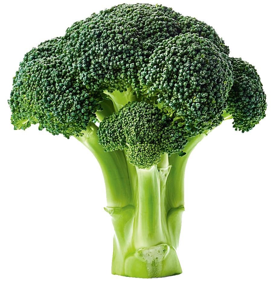 Отличная альтернатива модной сегодня капусте кейл (или кале). В брокколи тоже содержатся витамины А, С, группы В, калий, кальций. А кроме того – ценное вещество сульфорафан, помогающее п...