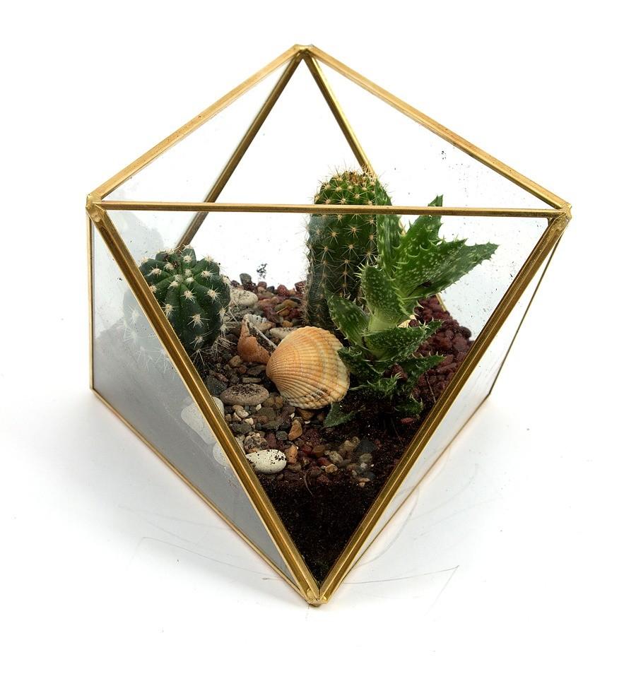 Интерьерное изделие «Флорариум», цена – ок. 1300 руб.