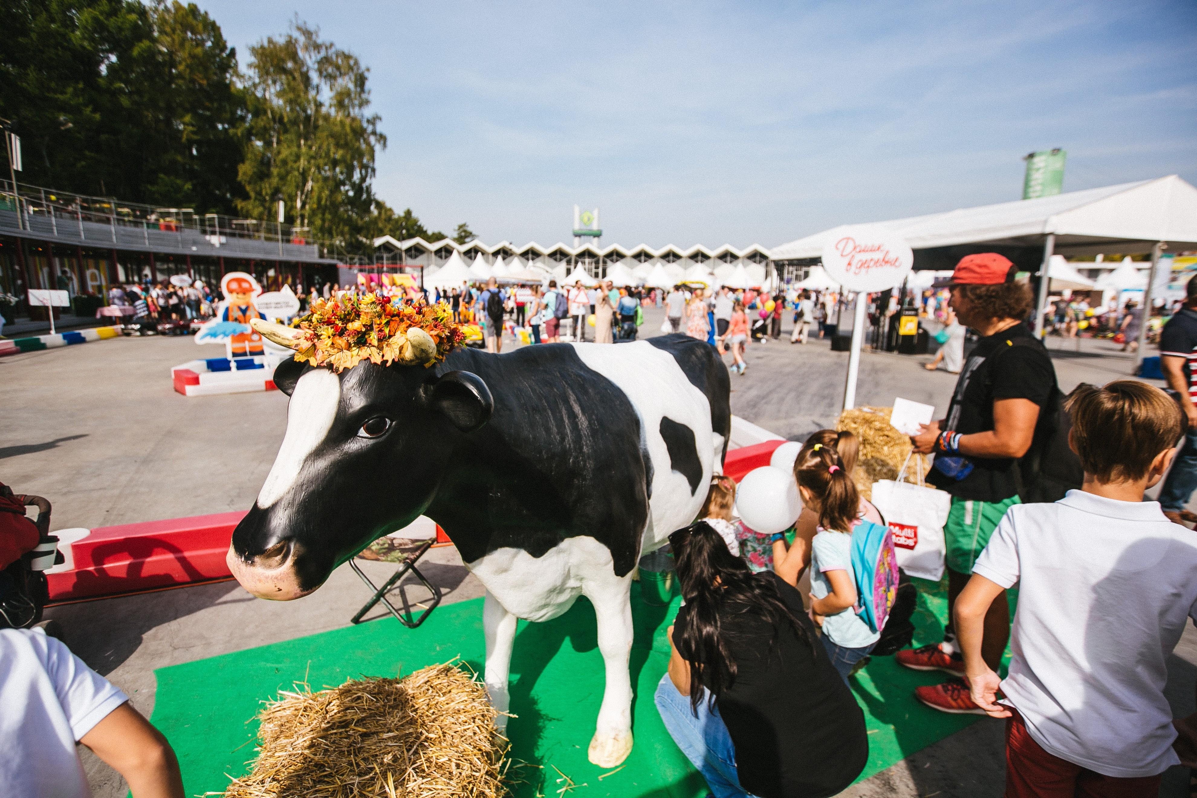 В «Сокольниках» прошел первый семейный фестиваль Лиза. Family Fest