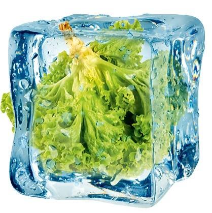 Отличный способ хранения зелени, если не сказать больше – самый полезный. Вся зелень, хранящаяся в морозильной камере, сохраняет полный набор витаминов. Кроме того, метод заготовки подойд...