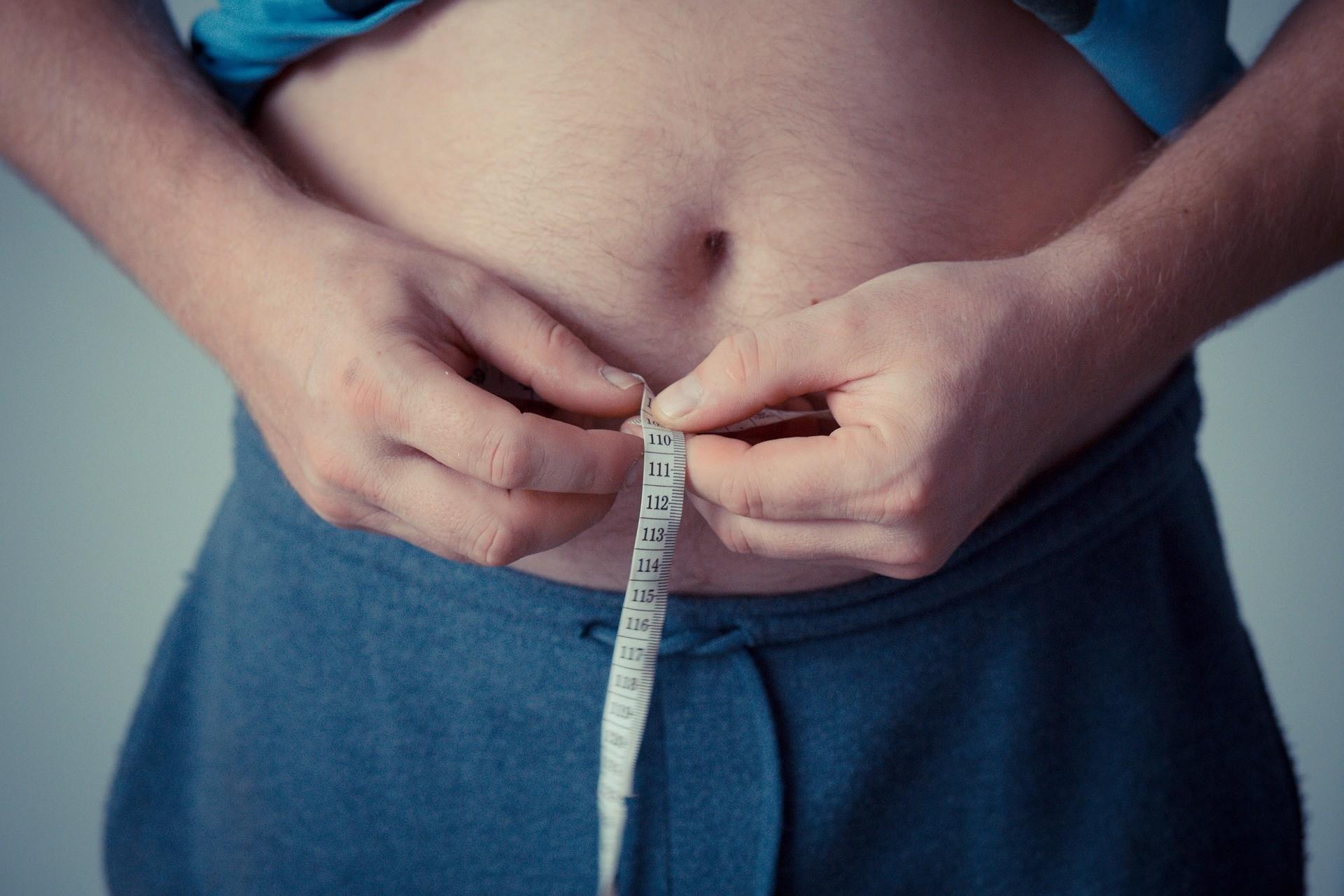 Ученые установили, что избыток жира ведет к уменьшению объема мозга